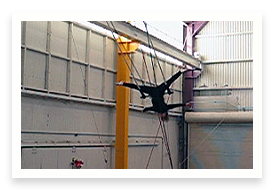 Video of Woman on Flying Trapeze